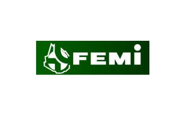 FEMI-Artigas
